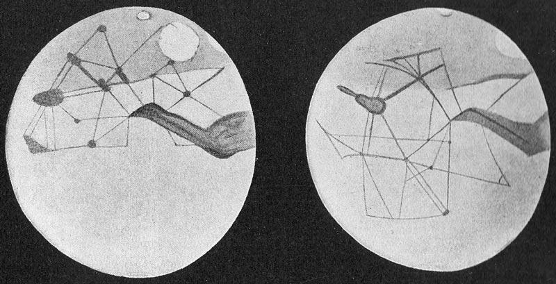 Marcianos de Lowell e o método científico